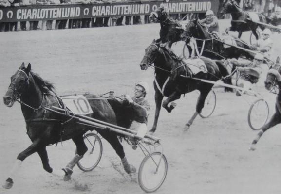 """HCS vinder Mesterskab for Danmark. Her kan man tydeligt se hvor tæt Mogens Larsen yndede at sidde på hesten, så han - som han udtrykte det - bedre kunne """"kæle"""" for den."""