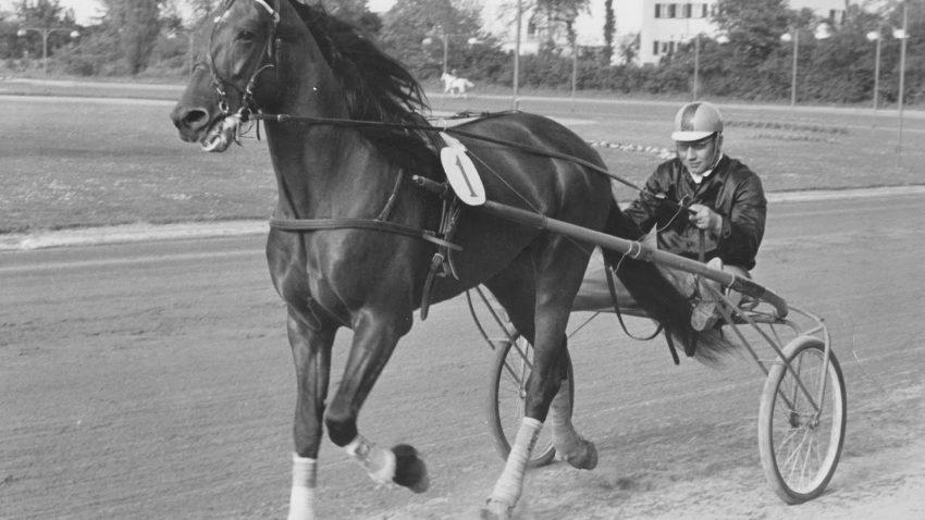 Hansa-1966
