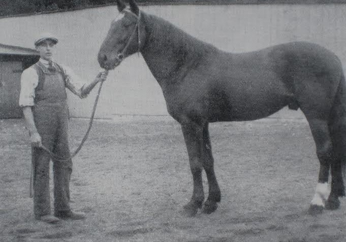 ArnoldJensen-1911